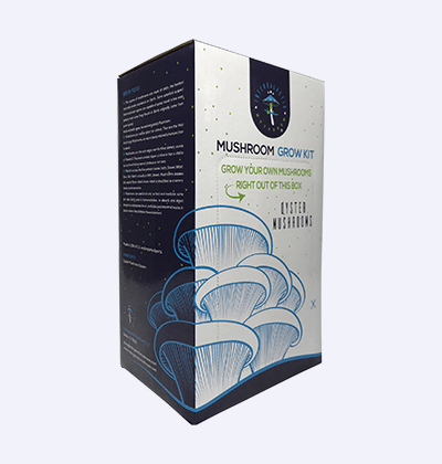Mushroom Kit Boxes