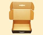 Locking Mailer Suitcase Box