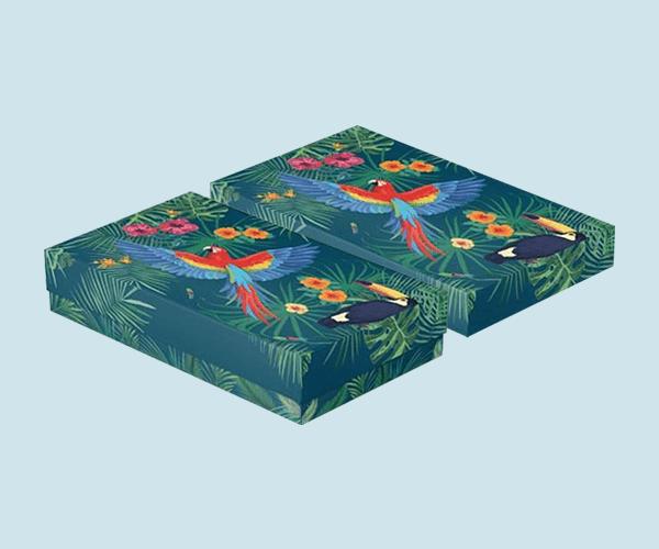 Custom Printed 2-piece Gift Packaging